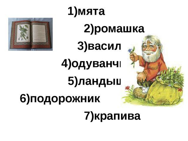 1)мята        2)ромашка       3)василек     4)одуванчик 5)...