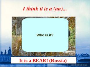 I think it is a (an)... Who is it? It is a BEAR! (Russia)