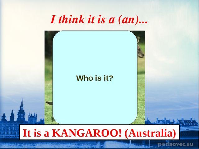 I think it is a (an)... Who is it? It is a KANGAROO! (Australia)