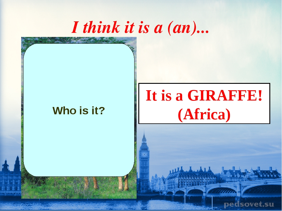 I think it is a (an)... Who is it? It is a GIRAFFE! (Africa)