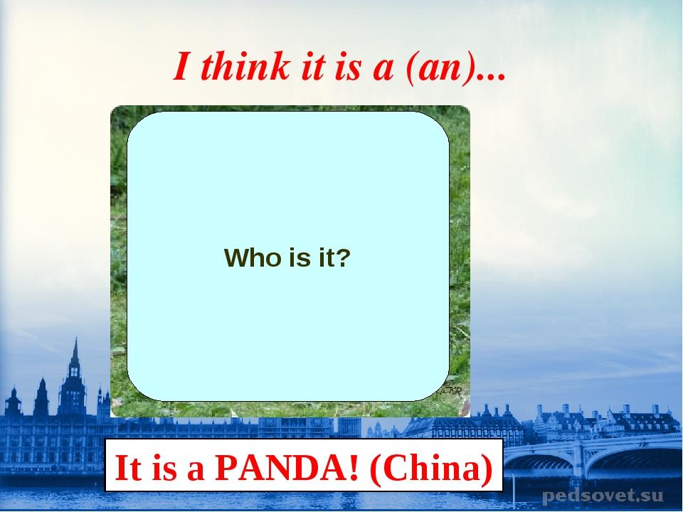 I think it is a (an)... Who is it? It is a PANDA! (China)
