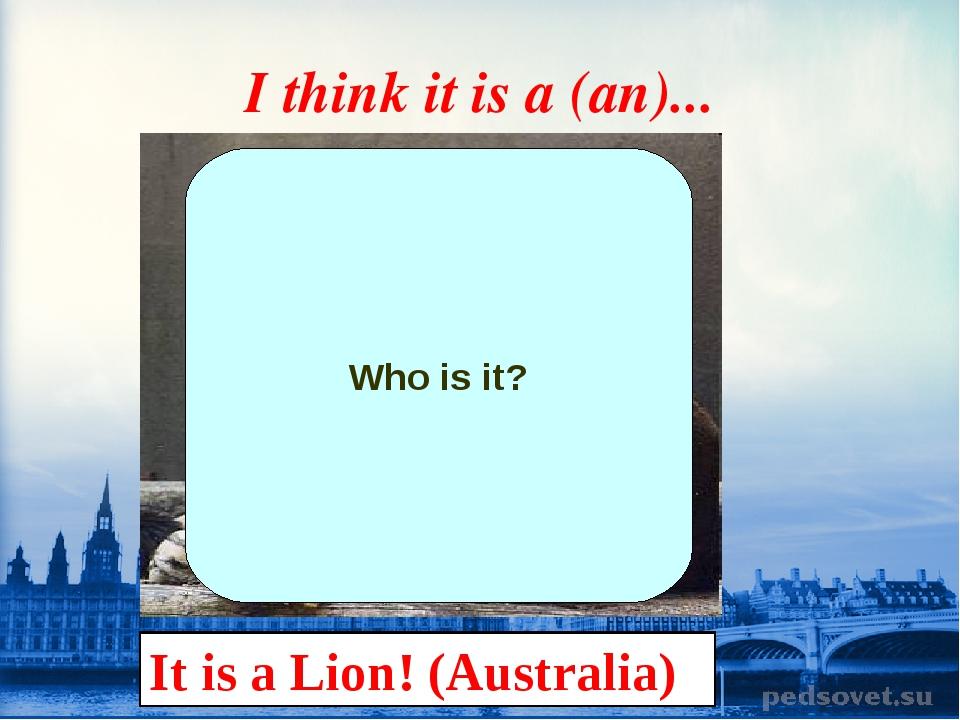 I think it is a (an)... Who is it? It is a Lion! (Australia)