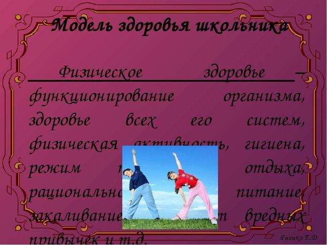 Модель здоровья школьника Физическое здоровье – функционирование организма, з...