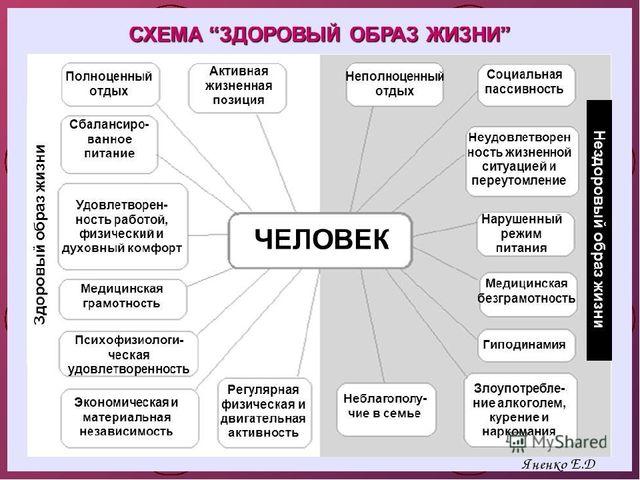 Яненко Е.Д