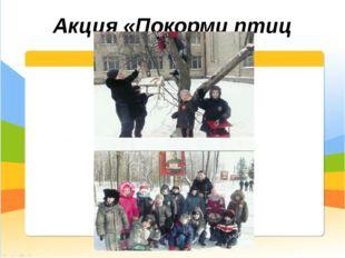 Акция «Покорми птиц зимой»