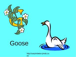 Goose http://urazimbetov.jimdo.com/