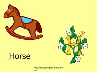Horse http://urazimbetov.jimdo.com/
