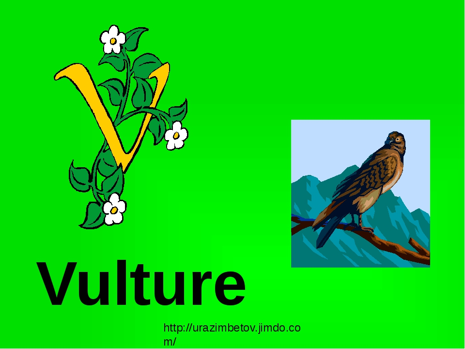 Vulture http://urazimbetov.jimdo.com/