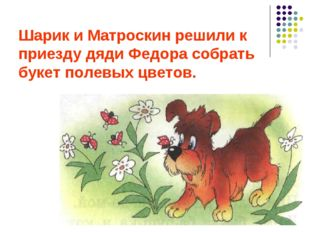 Шарик и Матроскин решили к приезду дяди Федора собрать букет полевых цветов.
