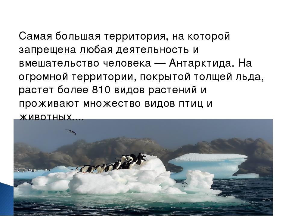 Самая большая территория, на которой запрещена любая деятельность и вмешатель...