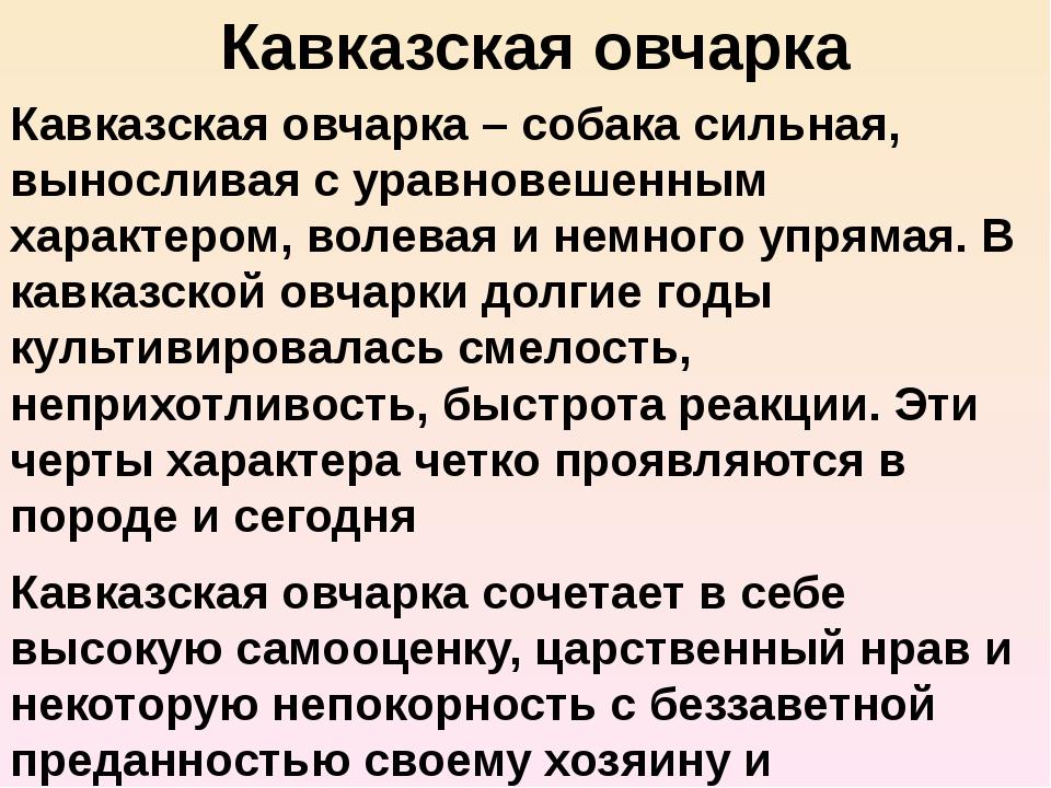 Кавказская овчарка Кавказская овчарка – собака сильная, выносливая с уравнове...