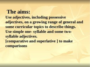 The aims: Use adjectives, including possessive adjectives, on a growing rang