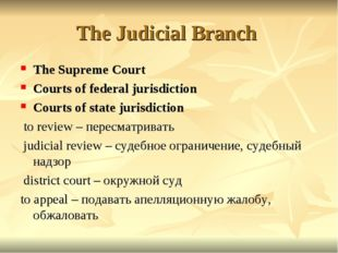 The Judicial Branch The Supreme Court Courts of federal jurisdiction Courts o