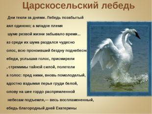 Царскосельский лебедь … Дни текли за днями. Лебедь позабытый Таял одиноко; а