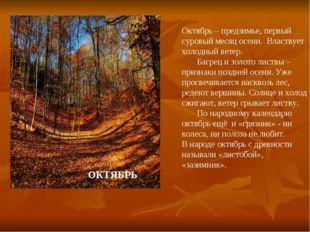 Октябрь – предзимье, первый суровый месяц осени. Властвует холодный ветер. Ба