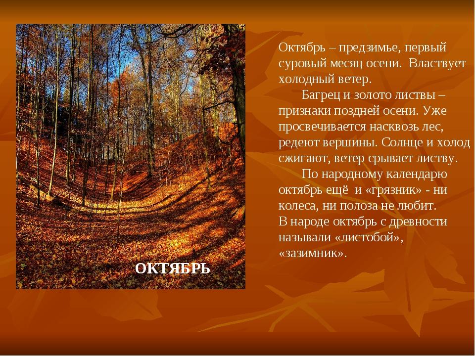 Октябрь – предзимье, первый суровый месяц осени. Властвует холодный ветер. Ба...