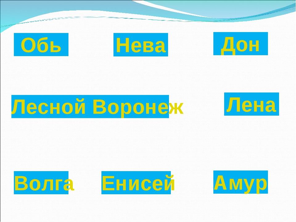 Обь Лена Амур Лесной Воронеж Дон Енисей Волга Нева
