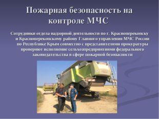 Пожарная безопасность на контроле МЧС Сотрудники отдела надзорной деятельност