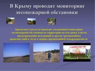 В Крыму проводят мониторинг лесопожарной обстановки Крымские спасатели провод