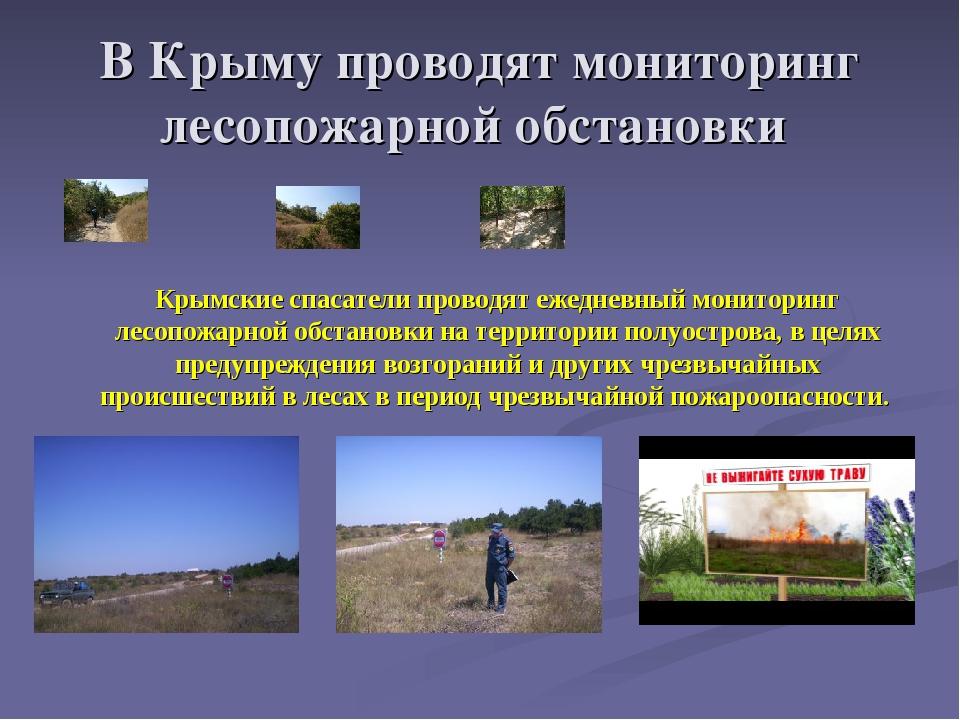 В Крыму проводят мониторинг лесопожарной обстановки Крымские спасатели провод...