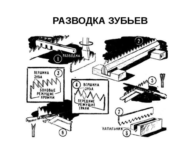 РАЗВОДКА ЗУБЬЕВ