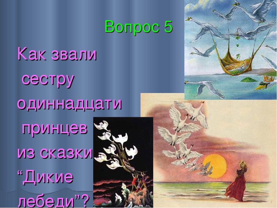 """Вопрос 5 Как звали сестру одиннадцати принцев из сказки """"Дикие лебеди""""?"""