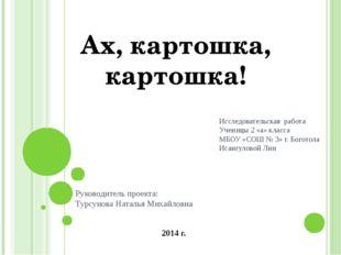Руководитель проекта: Турсунова Наталья Михайловна Исследовательская работа У