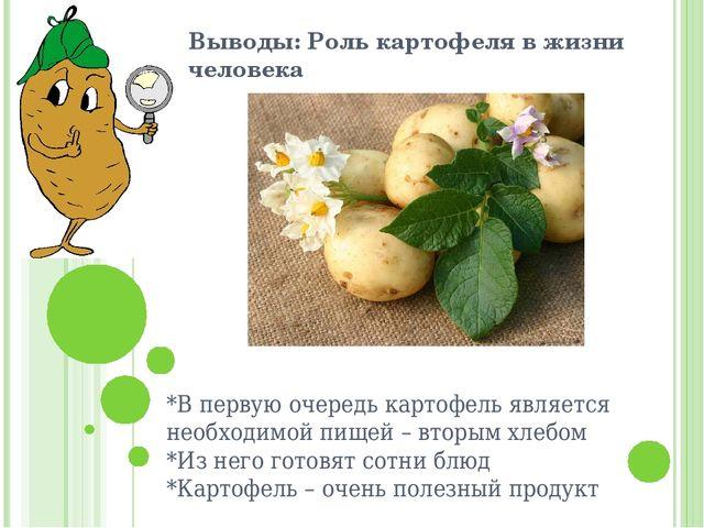 Выводы: Роль картофеля в жизни человека *В первую очередь картофель является...