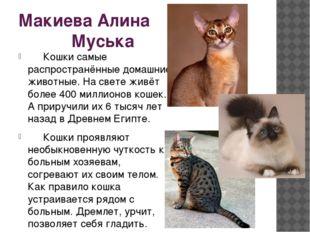 Макиева Алина Муська Кошки самые распространённые домашние животные. На свет