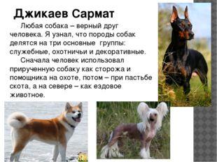 Джикаев Сармат Любая собака – верный друг человека. Я узнал, что породы соба