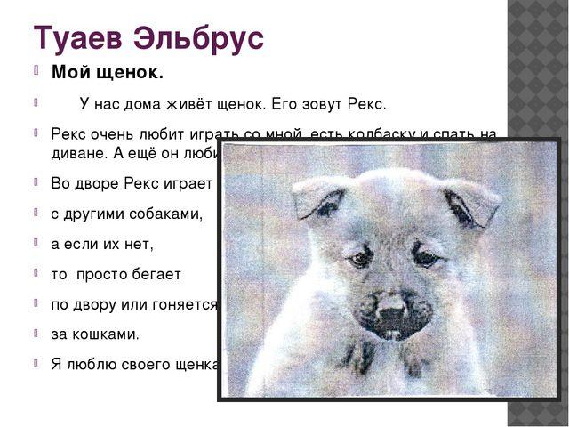 Туаев Эльбрус Мой щенок. У нас дома живёт щенок. Его зовут Рекс. Рекс очень...