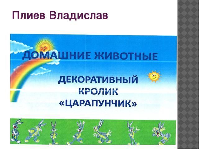 Плиев Владислав