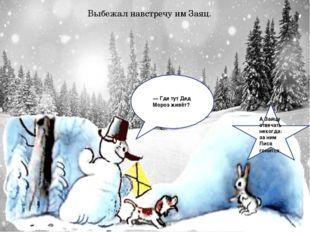 Выбежал навстречу им Заяц. — Где тут Дед Мороз живёт? А Зайцу отвечать неког