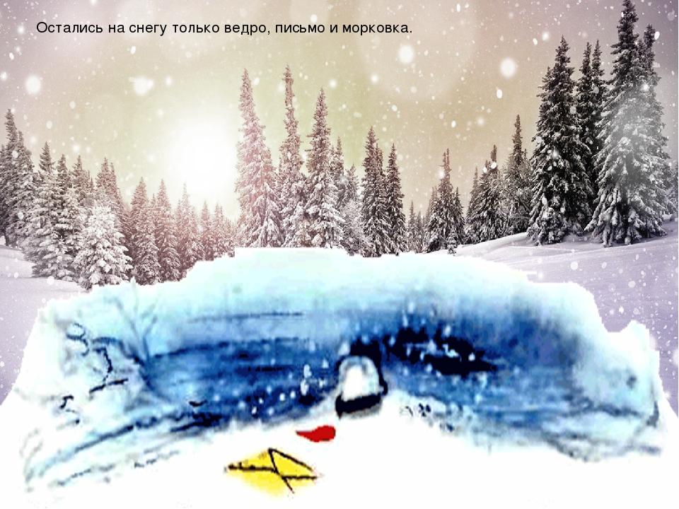Остались на снегу только ведро, письмо и морковка.