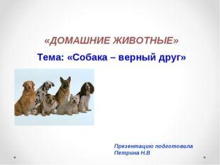 «ДОМАШНИЕ ЖИВОТНЫЕ» Тема: «Собака – верный друг» Презентацию подготовила Петр