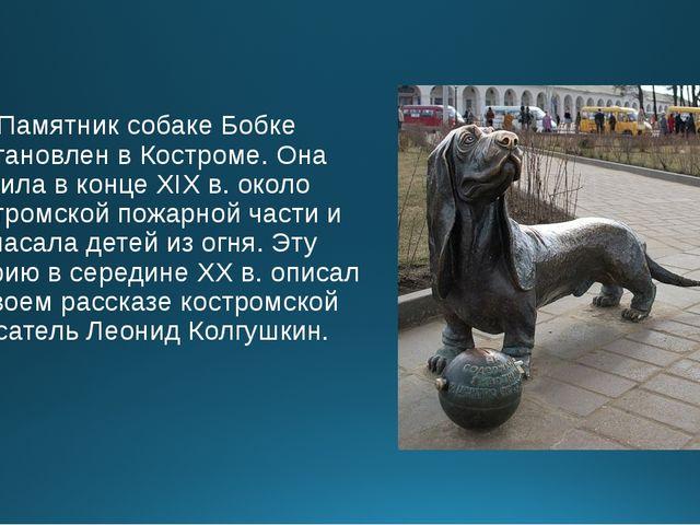 Памятник собаке Бобке установлен в Костроме. Она жила в конце XIX в. около ко...