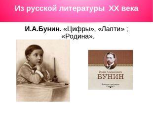 Из русской литературы ХХ века И.А.Бунин. «Цифры», «Лапти» ; «Родина».