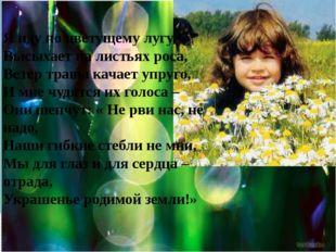 Я иду по цветущему лугу, Высыхает на листьях роса, Ветер травы качает упруго,