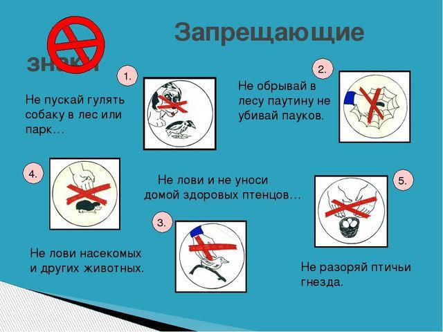 Запрещающие знаки Не обрывай в лесу паутину не убивай пауков. Не разоряй пти...