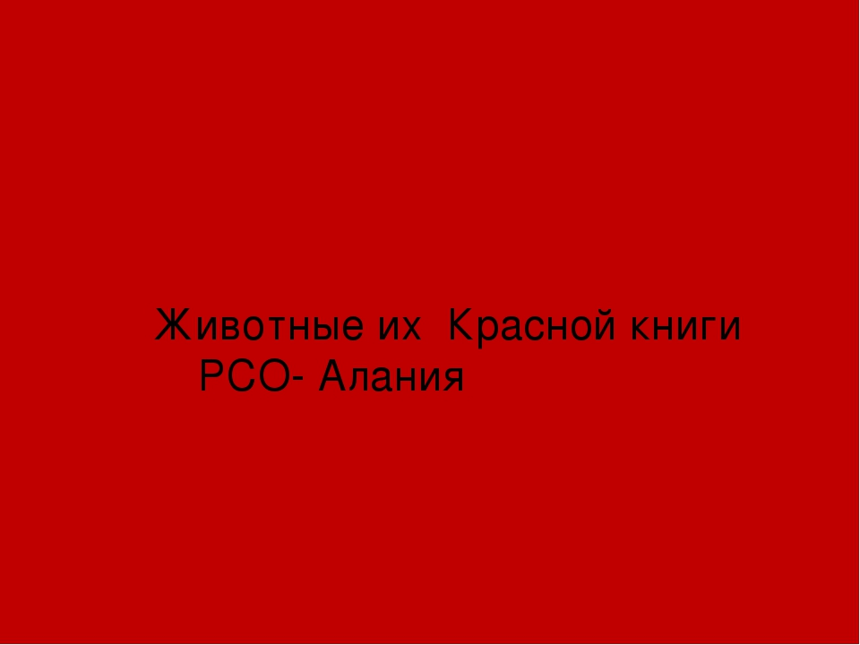 Животные их Красной книги РСО- Алания