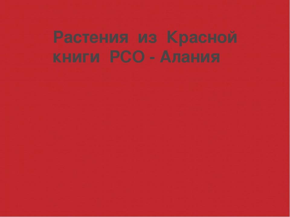 Растения из Красной книги РСО - Алания