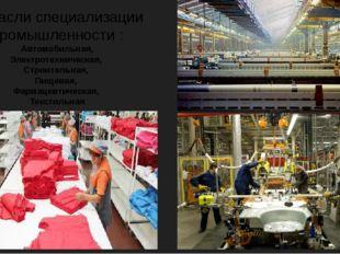 Отрасли специализации промышленности : Автомобильная, Электротехническая, Стр