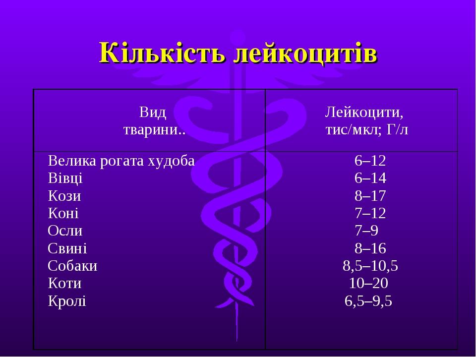 Кількість лейкоцитів Вид тварини..Лейкоцити, тис/мкл; Г/л Велика рогата худо...
