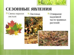 Смена окраски листьев Листопад Отмирание надземной части травяных растений СЕ
