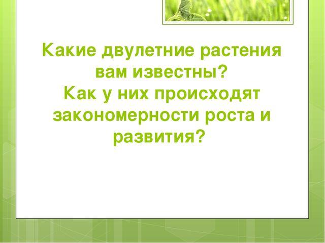 Какие двулетние растения вам известны? Как у них происходят закономерности ро...
