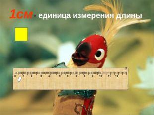 1см - единица измерения длины