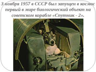3 ноября 1957 в СССР был запущен в космос первый в мире биологический объект
