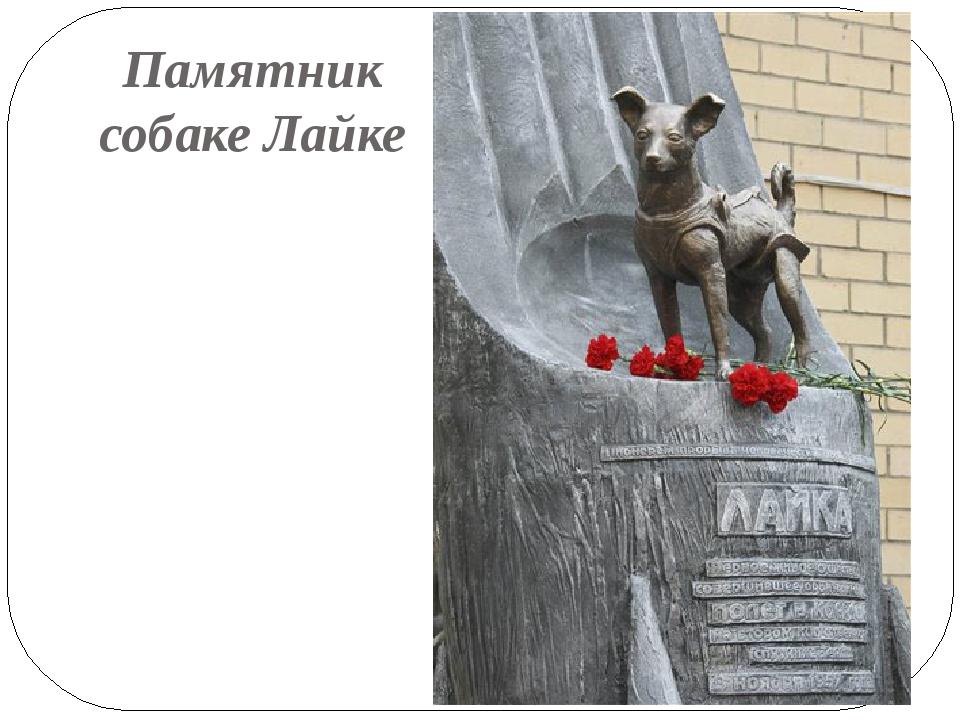 Памятник собаке Лайке