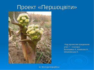 Проект «Першоцвіти» Над проектом працювали учні 7 – го класу: Волошина А, Нов