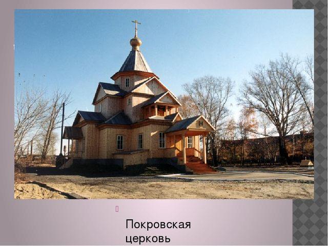 дом Валерия Золотухина в с. Быстрый Исток Покровская церковь
